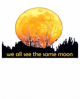 we all see the same moon-effects-3383x4192